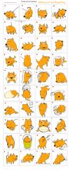 マンゴードッグ・LINEスタンプ開発中:Making a MangooDog Sticker